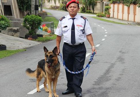 service-guard-dor